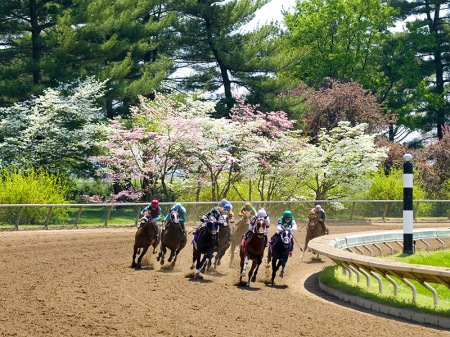 Keeneland-Turning-the-Corner-for-Home